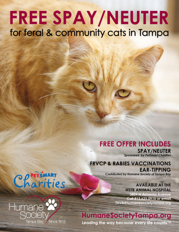 St Francis Society Animal Rescue Non Profit Cat Dog Rescue And